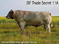 Trade Secret 2