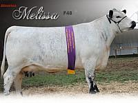Almarlea 68L Melissa F48